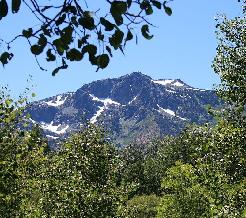 A view of Mount Tallac